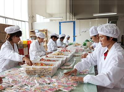 中国大型木制玩具生产基地